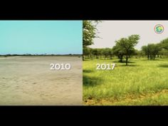 From deserts to forest: our project in Burkina Faso List Of Countries, Countries Of The World, Farm Activities, Water Retention, Growing Tree, Earth Day, How To Run Longer, Trees To Plant, Climate Change
