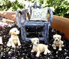 Miniature Fairy Garden or Dollhouse Pet Dogs