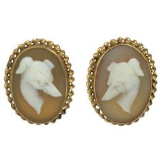 Unusual late Victorian shell cameo earrings of carved whippet heads set in twisted gold frames.Lovely carving and excellent condition.Pierced back fittings. Cameos circa Mounted approx x Shell Earrings, Stud Earrings, Cameo Jewelry, Gold Jewelry, Seashell Jewelry, Animal Decor, Antique Earrings, Pearl Studs, Victorian Jewelry