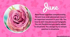 June Birth Flower Rose February Birth Flowers, June Flower, Birth Month Flowers, Short Happy Birthday Wishes, Lady Banks Rose, Birth Flower Tattoos, Flower Chart, Flower Meanings, Verses For Cards