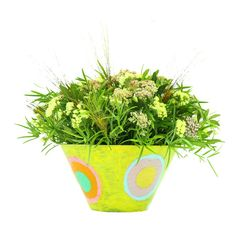 Seasonal Flowers, Olive Tree, Cut Flowers, Summer Collection, Red Roses, Floral Arrangements, Greenery, Grass, Cactus