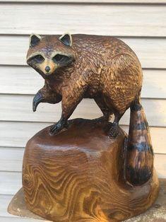 19 best raccoon images in 2019 drawings raccoon art raccoons