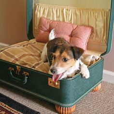 Make a Simple Suitcase Pet Bed - Do It Yourself Projects - Capper's Farmer awwww! cute-DE
