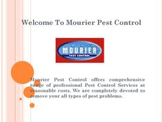 Call @ 99997875671. Pests are omnipresent creatures and disturb its surroundings with full strength. Call Mourier pest control services in Gurgaon to wipe off these animals with immediate effect.