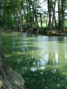 River - Bandera, Texas.. I think this is MEDINA river.. Which is SOO beautiful :) <3
