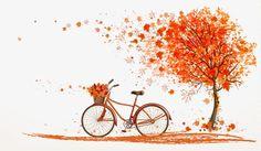 Autumn orange bicycle under maple