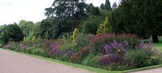 Trentham Estate.  Long Borders.  Piet Oudolf, garden designer