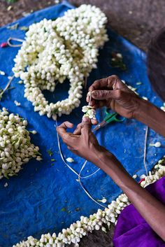 """Threading Garlands of Jasmine Flowers:  Symbolizes purity, beauty, attachment and divine hope.  Jasmine flowers are sacred to and commonly dedicated to Vishnu. They are used to adorn a bride's hair or women's hair at a celebration or in daily life.   Called """"Moonlight of the Grove"""" in India because it opens up and releases its captivating fragrance in the twilight hours..."""