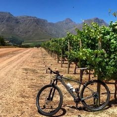 Mtb offroad by Andreas de Lange @andreas177 #cycling #mountain #mountainbike #mtb #singletrack #fitness #bicycle #capetown #summer #gym #winelands