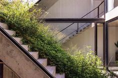 Arquitectura designed the MeMo House, a solar-powered home that wraps around a green roof. Concrete Staircase, Concrete Wood, Modern Staircase, Sloped Garden, House And Home Magazine, Sliding Glass Door, Solar Panels, Stairs, Photos