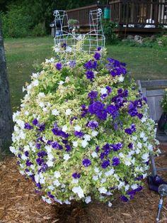 Dressform flowers - Garden Junk Forum - GardenWeb