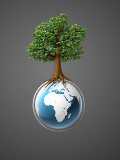 WTAMU Environmental Engineering FAQ