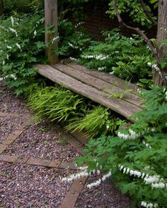 Rustic Bench and interesting path