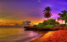tropical sunrise - Bing images