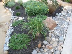 Low Maintenance Front Yard Landscaping | DIY / Low Maintenance Front Yard Landscaping