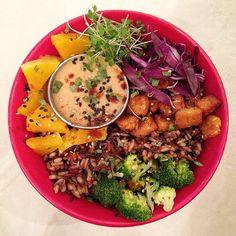 #BUDDHABOWL for dinner consisted of broccoli brown rice tempehbutternut squashred cabbagepeanut-miso sauce and #microplantsrobert mustard microgreensss #vegan #veggies #veganfood #vegansofig #veganbowl #vegetables #vegetarian #vegandinner #veganfoodporn #macrobowl #whatveganseats #superfoods #microgreens #plantbasedfood #plantbaseddinner #plantbased #healthydinner #healthyfood #healthy #rawfood #rawliving #bestofvegan #govegan #foodporn #foodie #wholegrains #hclf #rainbowbowl by deepanvegan