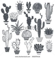 Cactus and succulents isolated on white background. Vector, hand drawn set illustration.