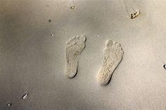 Meine Füsse im Sand von Hong Island, Krabi, Thailand Krabi, Moth, Insects, Thailand, Island, Animals, Block Island, Animais, Animales