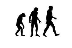 Human Evolution 'Definitely Not' Over, Expert Says
