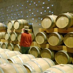Bodegas Vega Manchón productores de Cuna de Tierra, unos de los mejores vinos mexicanos.
