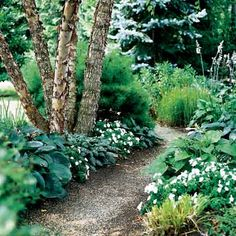 Carve out pathways and planting beds to fill with a mix of annuals and perennials.