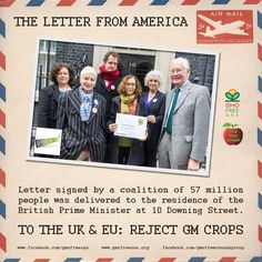 """It's time the public gets a say about what they eat, what they feed their children, and it's time politicians and regulators started listening,""""    http://www.dailymail.co.uk/news/article-2830518/Hollywood-stars-sign-letter-warning-British-people-against-GM-foods.html  http://sustainablepulse.com/2014/11/13/57-million-americans-warn-uk-dangers-gm-food-farming  http://www.theletterfromamerica.org/  #TheLetterFromAmerica #RejectGMOs #GMO #GMCrops #UK #EU #BritishPrimeMinister #gmofreeusa"""