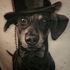 gentleman dog portrait. For inquiries or booking email…