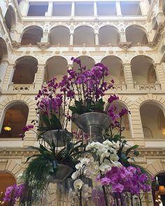 🌺 #flowerfever #lobby #luxury #boscolobudapest #fivestarhotel @fleurtflowersbudapest