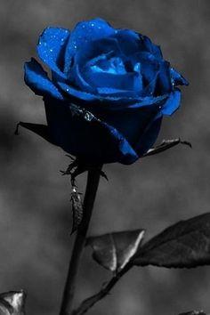 ...... Dark beautiful blue