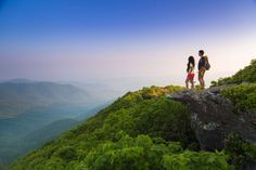 Craggy Pinnacle Trail   Asheville, NC's Official Travel Site