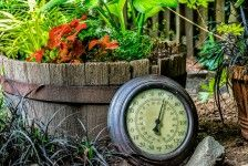 Garden Thermometer Jigsaw Puzzle