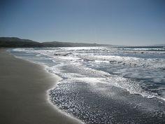 Doran Beach, Bodega Bay, CA