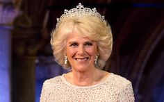 Camilla has been inspired to help those who have been sexually abused after   working with victims since 2009