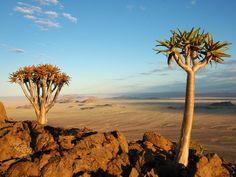Klein-Aus Vista - Namiba