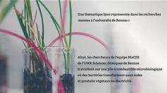Université de Rennes 1 - Montage + FX
