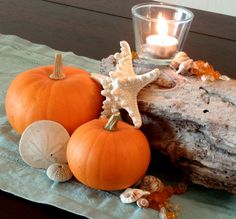 Coastal Fall Centerpiece--everything looks better with a little touch of ocean! Driftwood Centerpiece, Pumpkin Centerpieces, Centerpiece Wedding, Coastal Fall, Coastal Decor, Coastal Christmas, Seaside Decor, Holiday Beach, Coastal Style