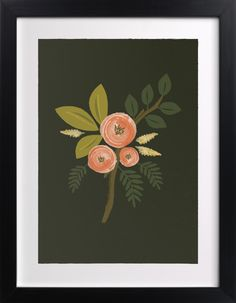 """Botanical - Limited Edition Art Print by Karidy Walker in beautiful frame options and a variety of sizes. Wall Art Prints, Fine Art Prints, Art Store, Home Wall Art, Custom Art, Botanical Illustration, Canvas Frame, Seed Packets, Gardening Supplies"