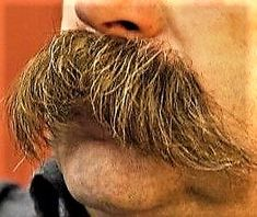 Walrus moustache Beard No Mustache, Moustache, Beard Haircut, Male Pattern Baldness, Awesome Beards, Facial Hair, Barber Shop, Hair Cuts, Beards