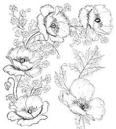 Embroidery Designs Digital Two for Tuesday: Beautiful Flower Designs for Embroidery or Digital Stamping Colouring Pages, Adult Coloring Pages, Coloring Books, Beautiful Flower Designs, Beautiful Flowers, Embroidery Patterns, Hand Embroidery, Flower Embroidery, Embroidery Tattoo