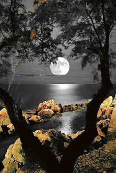 A pearl on the horizon Moon Pictures, Nature Pictures, Pretty Pictures, Beautiful Moon, Beautiful Images, Photo Voyage, Image Nature, Shoot The Moon, Good Night Moon