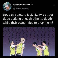 Manga Haikyuu, Haikyuu Karasuno, Haikyuu Funny, Haikyuu Fanart, Oikawa, Funny Video Memes, Funny Relatable Memes, I Hate My Life, Funny Anime Pics