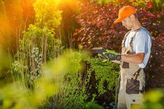 Shape Your Own Career Environment as a Landscaper - Career Ninja UK