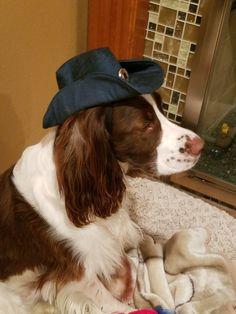 My new cowboy hat