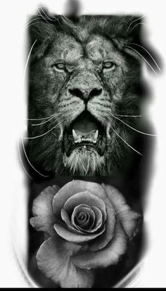 Lion of Judah and Rose, prophetic art.
