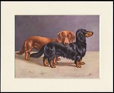 Shop from the world's largest selection and best deals for Paintings/Posters/Prints Mounted Dachshund Collectables. Shop with confidence on eBay!