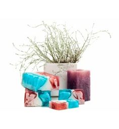 Our special såpe Soap, Homemade, Plants, Flora, Hand Made, Plant, Soaps, Do It Yourself, Planting