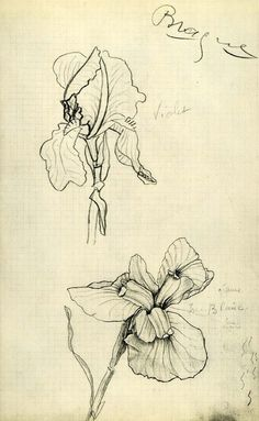 Georges Braque - Flowers. c.1932-33 drawing