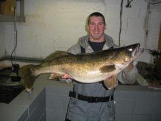 a walleye illinois america canada big fishes huge world record largest IGFA  small biggest fish l