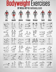 The Full body workouts without weights