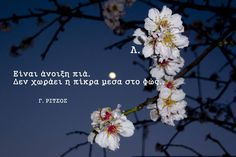 Epic Quotes, Poem Quotes, Movie Quotes, Wisdom Quotes, Poems, Life Quotes, Writers And Poets, Greek Words, Spring Is Here